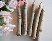 5 Paper Birch Wood Twig Pens - Rustic Woodland Wedding Writing Pen for Receptions, Outdoor Weddings or Bridal Baby Showers