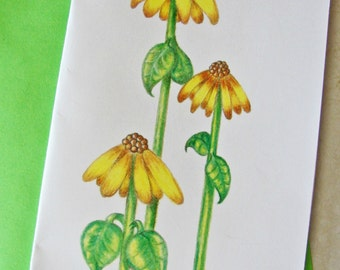 Three Flowers Greeting Card