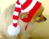 Pet Elf Christmas Beanie (XS-XL)