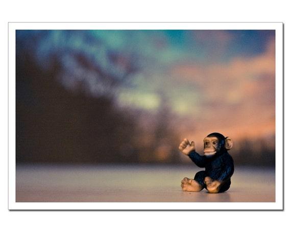 Nursery Decor, Chimp Monkey Art Print, Kids Room Still Life Photography, Farewell Sun 8x12, Nursery Decor