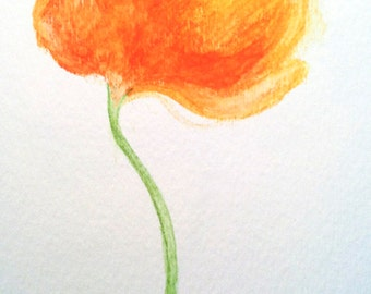 Orange Peony Water Color Painting - Original Painting