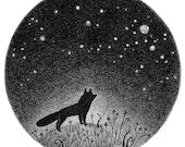 Fox in the Night Meadow 8x10 print