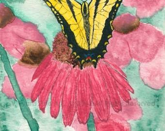 """5 x 7 inch Fine Art Print """"Butterfly"""""""