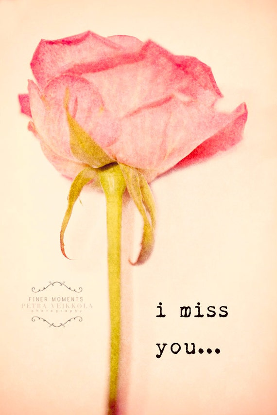 Rose With I Miss You | www.imgkid.com - The Image Kid Has It!