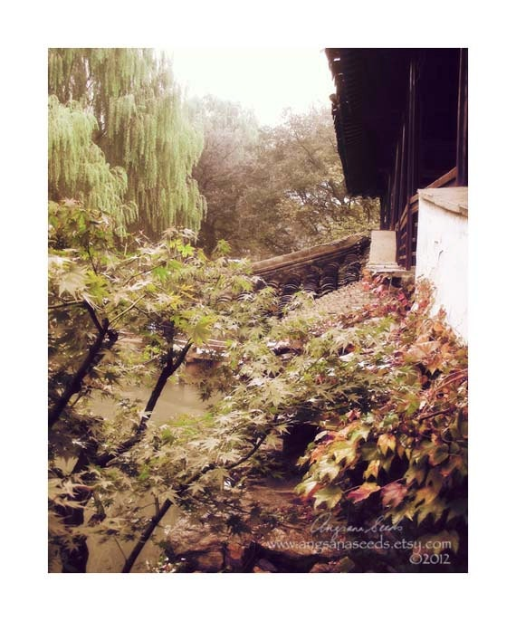 "Chinese garden Photo, Fall, autumn, country chic, 8""x10"", Suzhou, dreamy soft pastel, foliage, Willow tree, Wall decor"