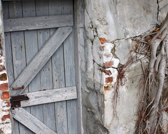 Grey Door,  Architectural Photography, Wall Decor,Tree Roots, Brick