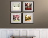 SALE,  Four Seasons Art Prints, 4 Seasons Wall Art, 4 Seasons Tree Print, Nature Photography- Save 50%