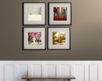 4 Seasons Tree Print- Nature Photography- Four Seasons Art Prints- 4 Seasons Wall Art
