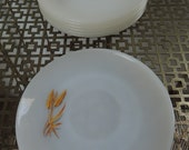 Vintage Fire King - Set of 7 Golden Wheat Pattern Milk Glass Saucers