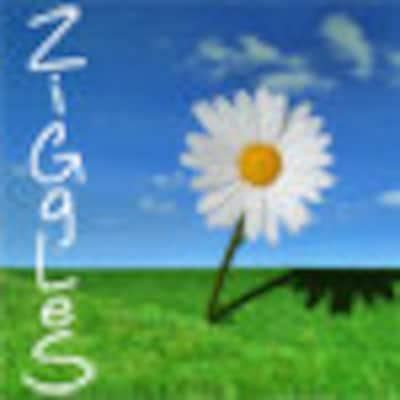 ziggles