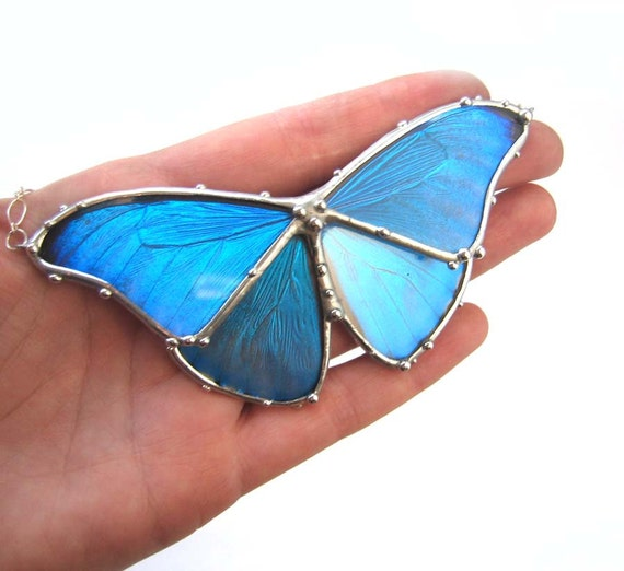 Blue Morpho Butterfly Necklace - Real Butterfly