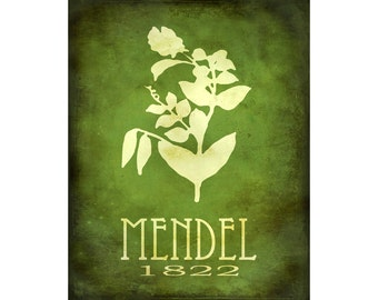 16x20 Science Art Poster,  Gregor Mendel Biology Print, Steampunk Rock Star Scientist, Pea Plant Genetics Geek Chic Decor