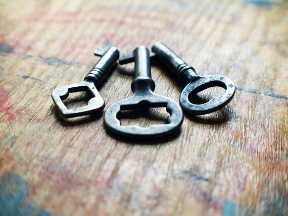 The Perfect Pendant Antique Skeleton Key Trio / Heart Key