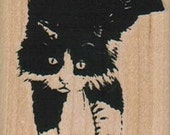 Rubber stamp  Cat stretching Tuxedo  wood mounted  scrapbooking supplies number 4045