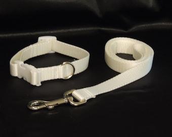 "Medium White Wedding Dog Collar 11-15"" and Leash"