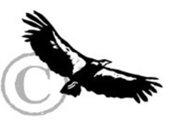 California Condor rubber stamp
