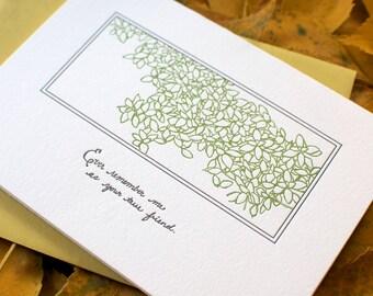 Autograph Letterpress Cards (Boxed Set of 6 cards & envelopes)