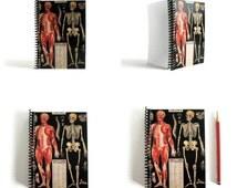 Anatomy - A6 Notebook Spiral Bound - Pocket School Journal - 4x6in