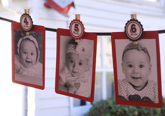 The Original Baby's 1st Year Tags- Create a Photo Banner- Any Theme from my Shop - Tags ONLY - clips, ribbon and cardstock not included