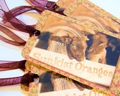 Gift Tags for Knit, Crochet or Any Handmade Fiber Gifts - Lambs Go for a Ride - Set of 8 Fiber Care Tags