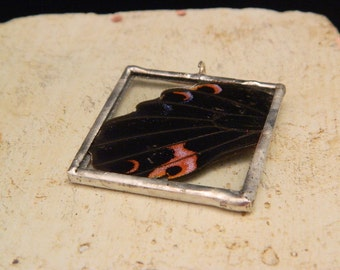 Real Butterfly Wing Soldered Pendant/Necklace-- Anna