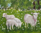 Mother sheep and three young sheep
