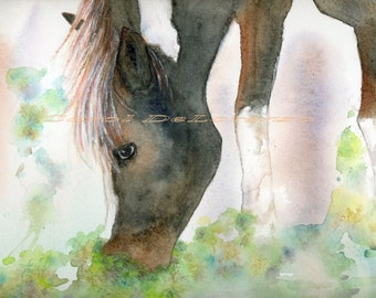 Watercolor Painting Horse Art, Horse Painting, Horse Watercolor, Horse Art Print, Equine Art, Print Of Original Watercolor Titled Babe