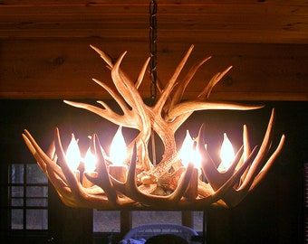 Brand New 26 inch Whitetail Deer Shed Antler Chandelier