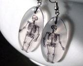 Skeleton earrings, bones, Halloween , specimen series , resin earrings, anatomy, goth, gifts under 20