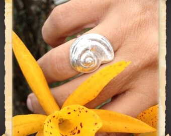 Nautilus Shell Ring, Fine Silver, Beachwear, for her, Shell Ring, Beach Jewelry, Made in Hawaii, Nautical Jewelry, Gift for Her