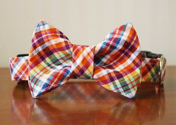 Bowtie Dog Collar - Isle of Palms Plaid