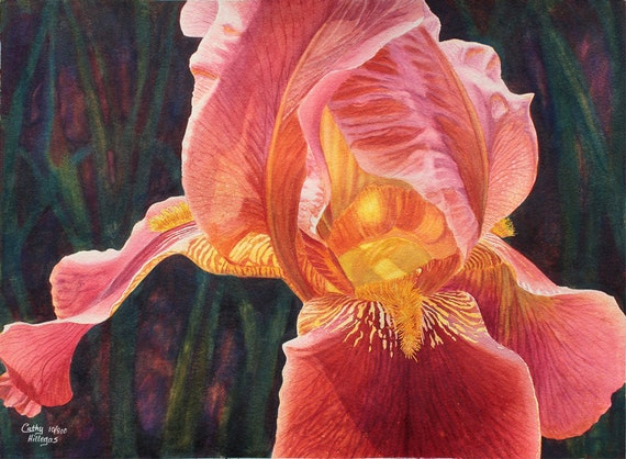 Iris art watercolor painting print by Cathy HIllegas, 12x16, watercolor print, watercolor iris, coral, peach, salmon, pink, gold, green