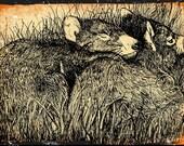 Tasmanian Devil  Original pen and ink  By Cindy Watkins print on card. Blank Gift Card with envelope.