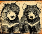 large Gift Card Tasmanian Devil  Original pen and ink  By Cindy Watkins print on card. Blank Gift Card with envelope.