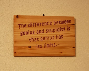 The difference between Genius and Stupidity - funnty carved wooden plaque -  12013