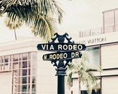 California, Los Angeles, Rodeo Drive, Travel Photography, Palm Tree, Wall Decor, Elegant, Rich -Via Rodeo