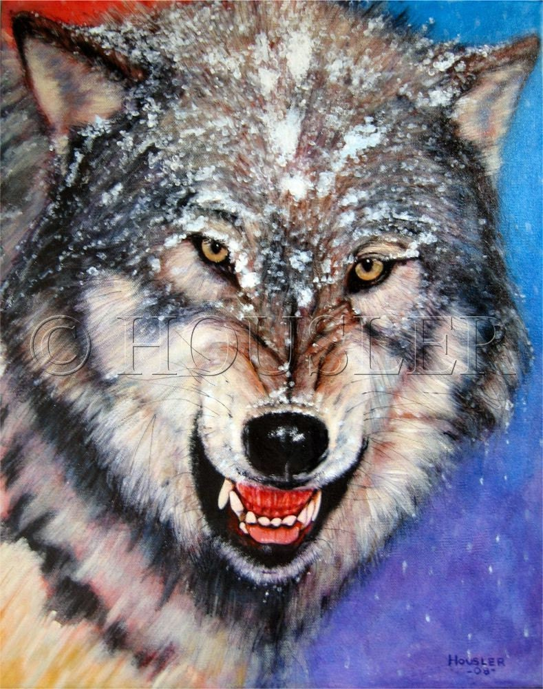 snarling gray wolf 16x20inch original acrylic painting