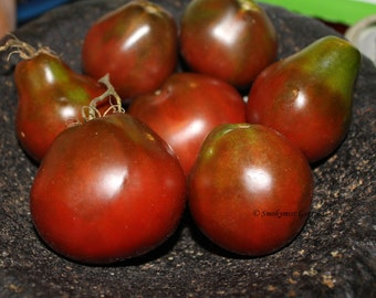 Heirloom Tomato Seeds Black Russian Truffle - 20 seeds