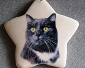 Black and White Cat star ornament, free personalizing 22k gold by Nicole