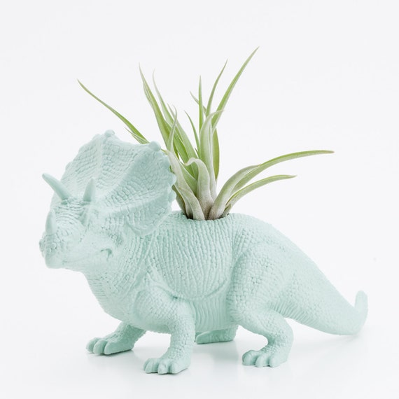 Dinosaur Planter and Air Plant Room Decor, College Dorm Ornament, Plants and Edibles, Mint Green