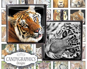 Big Cats 2 - .75 x .83 inches Great for scrabble tile pendants - Buy 2 Get One FREE