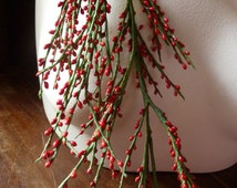 Red Berry Peps Holly Stamens for Christmas, Bridal, Headpieces, Halos, Wreaths, Bouquets, Boutonnieres MF18