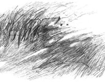 Windy Landscape Pencil Sketch, Art Print, Hilltop Houses, Sketchbook Drawing, Pencil Drawing Wall Art, Windswept Hill, 5 x 7, with 8 x10 mat