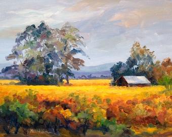 California Landscape, Sonoma Valley, Small Barn, Grape Vines, Summer Field, Impressionist Art Print, Country Scene, Landscape Painting, 8x10