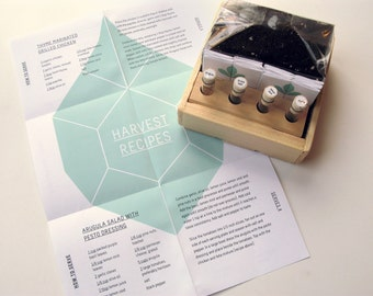 Herb Heirloom Seed Kit with Wooden Block and Vials