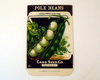 Vintage 1920s Unused Paper Seed Packet Pole Beans