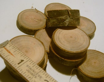 15 Wooden Tree Branch Slices slightly over an inch