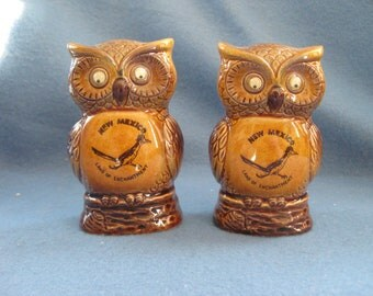 Vintage, New Mexico, Googley Eyed, Owl Salt & Pepper Shakers