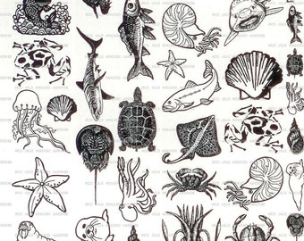 45 Aquatic Theme Sepia Decals for Image Transfer Onto Glass, Ceramics & Enamel - Aquatic45