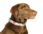 Red Plaid Dog Collar - Madras Plaid